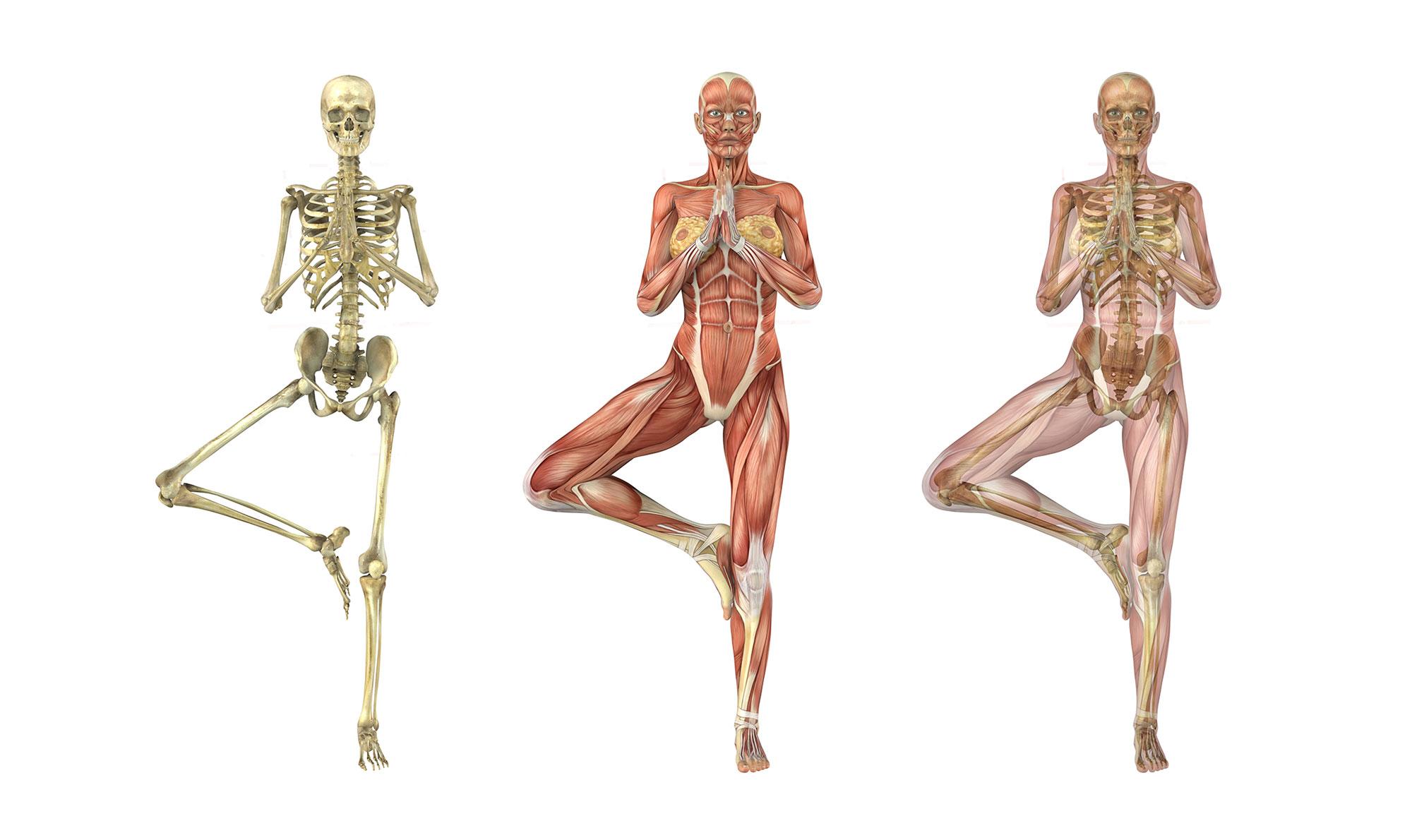 Was ist Osteopathie